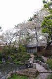 2012,4,30萬花楼桜 101