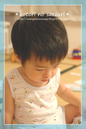 DSC_0070-1_20101210103055.jpg