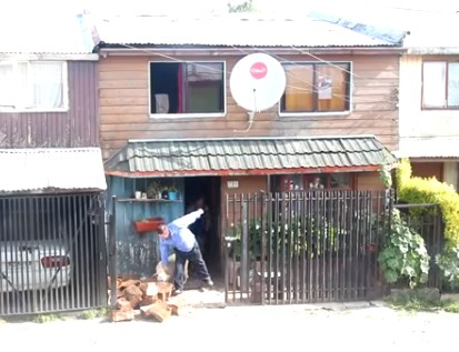 Dog helps its owner get firewood into the house in Puerto Montt