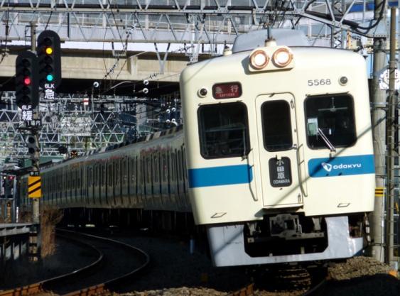 20110120-1.jpg