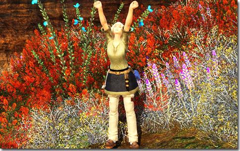 紅葉の秋♪