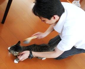 りー猫ひろしと