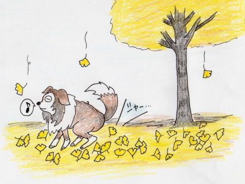 ルビー9歳の秋 イラスト