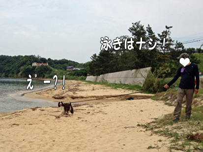 IMG_0752-1.jpg