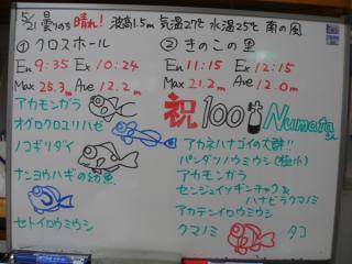 110521bloga.jpg