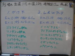 110613bloga.jpg