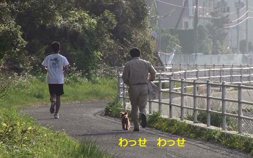 走りたくなったパパ