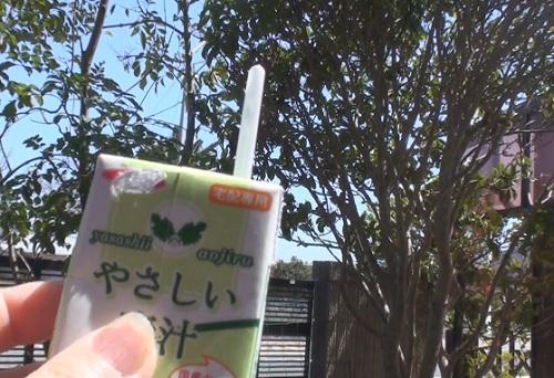 青空には青汁が似合う!?