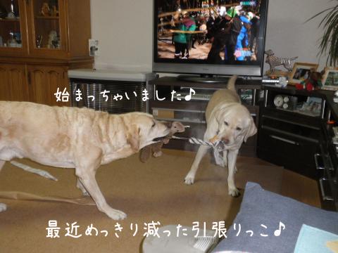 1_20110302203012.jpg