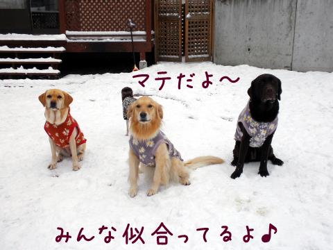 3wan_20101209220312.jpg
