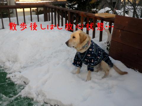 baru1_20110228220938.jpg