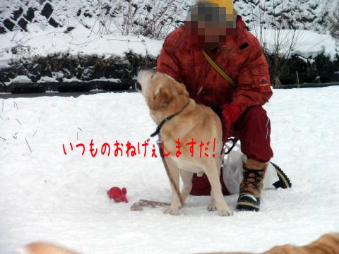 ben_20101226195723.jpg