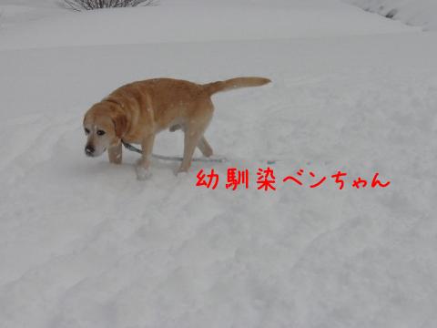 ben_20110214231350.jpg