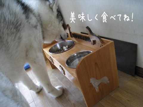 food_20110214232412.jpg