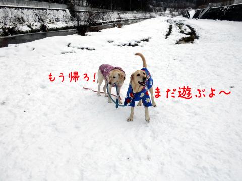 hanase2.jpg