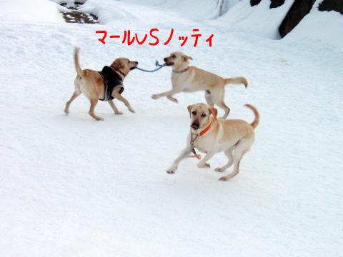 hipare_20110124211220.jpg