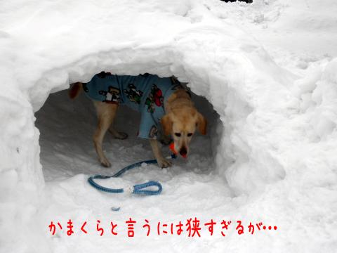 kanakura_20110210222013.jpg
