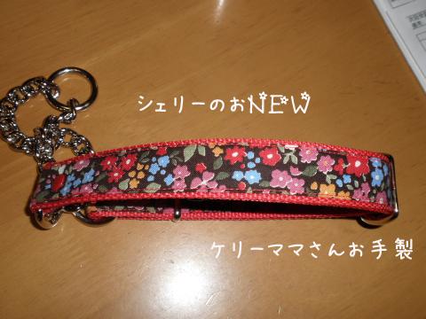 kubiwa1_20101209225326.jpg