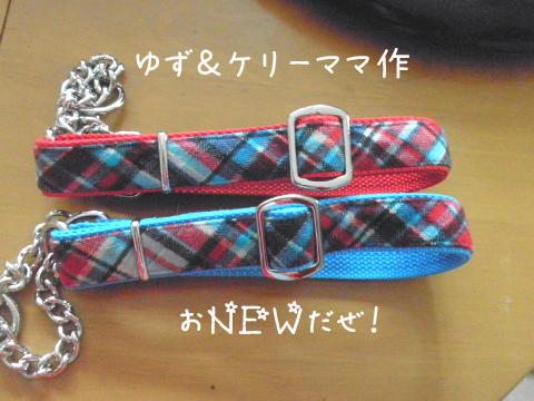 kubiwa_20110228220906.jpg