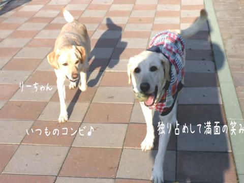 marulee_20101030233501.jpg
