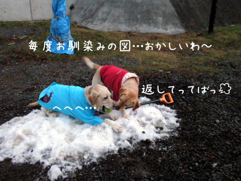 marulee_20101204181350.jpg
