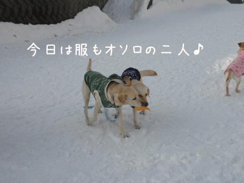marunotei2_20110227212210.jpg