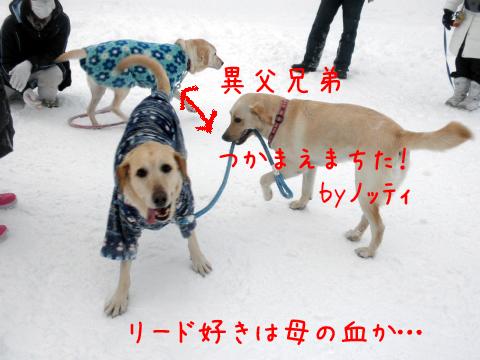 marunotei_20110214231349.jpg