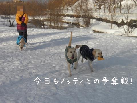 marunotei_20110227212211.jpg