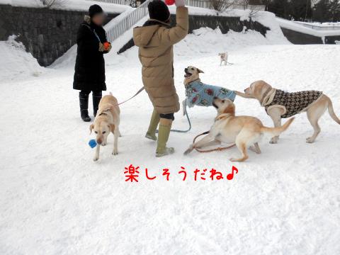 minna_20110210222015.jpg