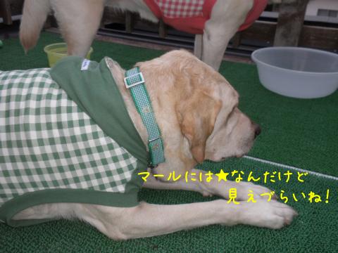 mkubiwa1.jpg