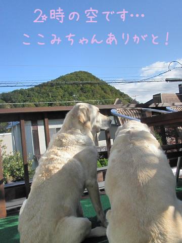 mokutou1.jpg