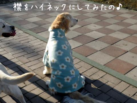 momifureusiro.jpg