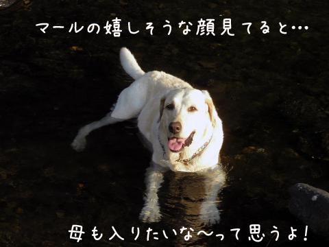 onsen1.jpg