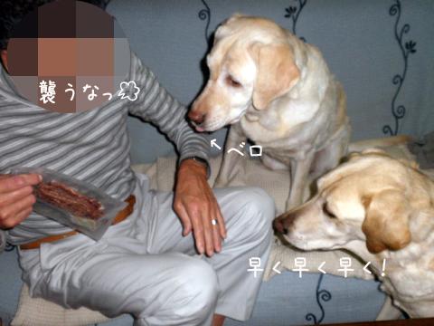 osowareru.jpg