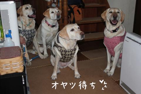 oyatu_20110205214412.jpg
