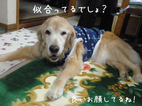 raki1_20101111230245.jpg