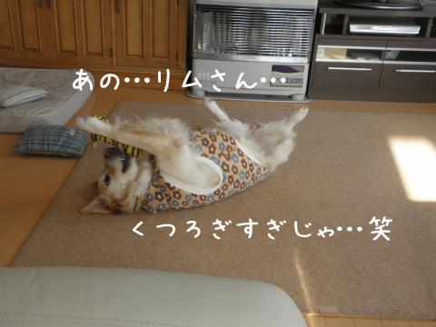 rimuhiraki.jpg