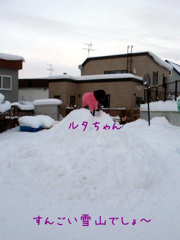 ruta_20110108182418.jpg