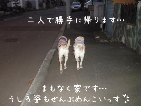 sanpo3.jpg