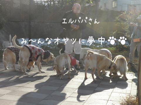 warawara_20101030232526.jpg