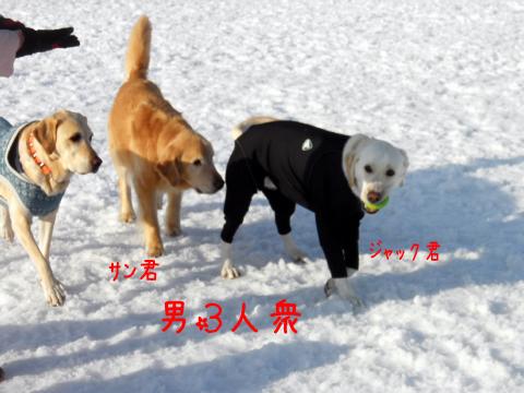 yarou3.jpg