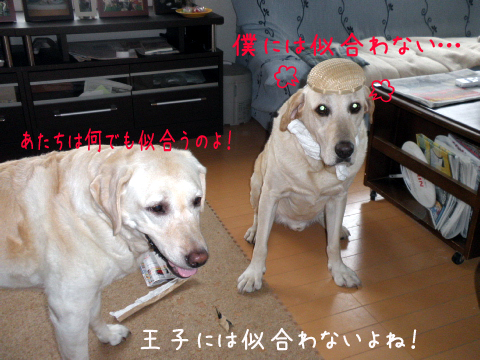 yasukimaru.jpg