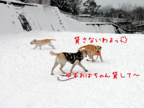 yuzuagenai.jpg