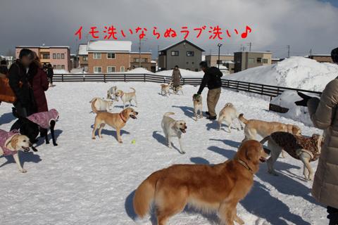 zentai_20110211222436.jpg