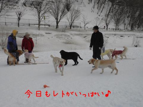 zentai_20110220180434.jpg