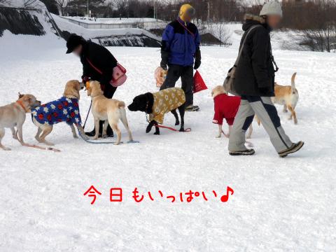zentai_20110226231902.jpg