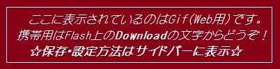 01_20101127004837.jpg