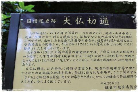 20120527m15.jpg