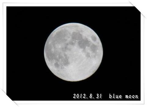 20120831m05.jpg