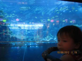 Dubai+Mall+Jun+10+2012+002_convert_20120611160808.jpg